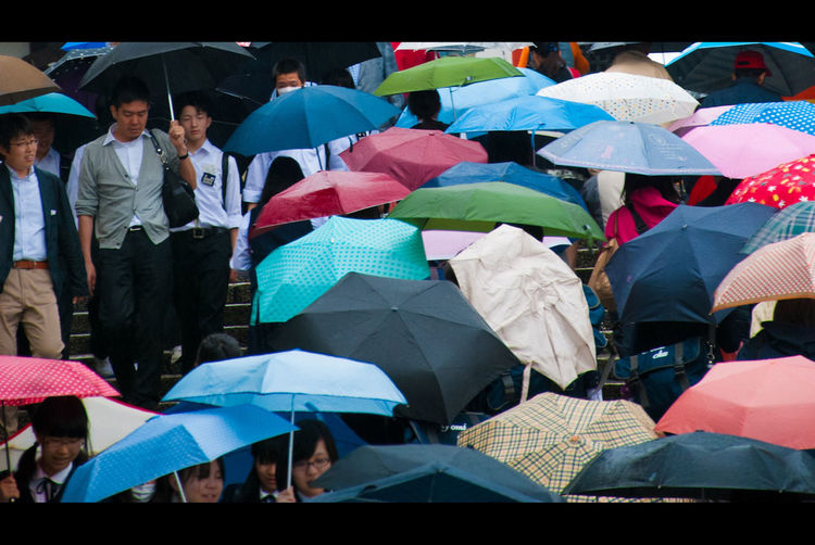 Japan Japanese  Japanese Culture Rain Rainy Days Crowd Large Group Of People Outdoors People Protection Rain Real People Umbrella Weather Wet