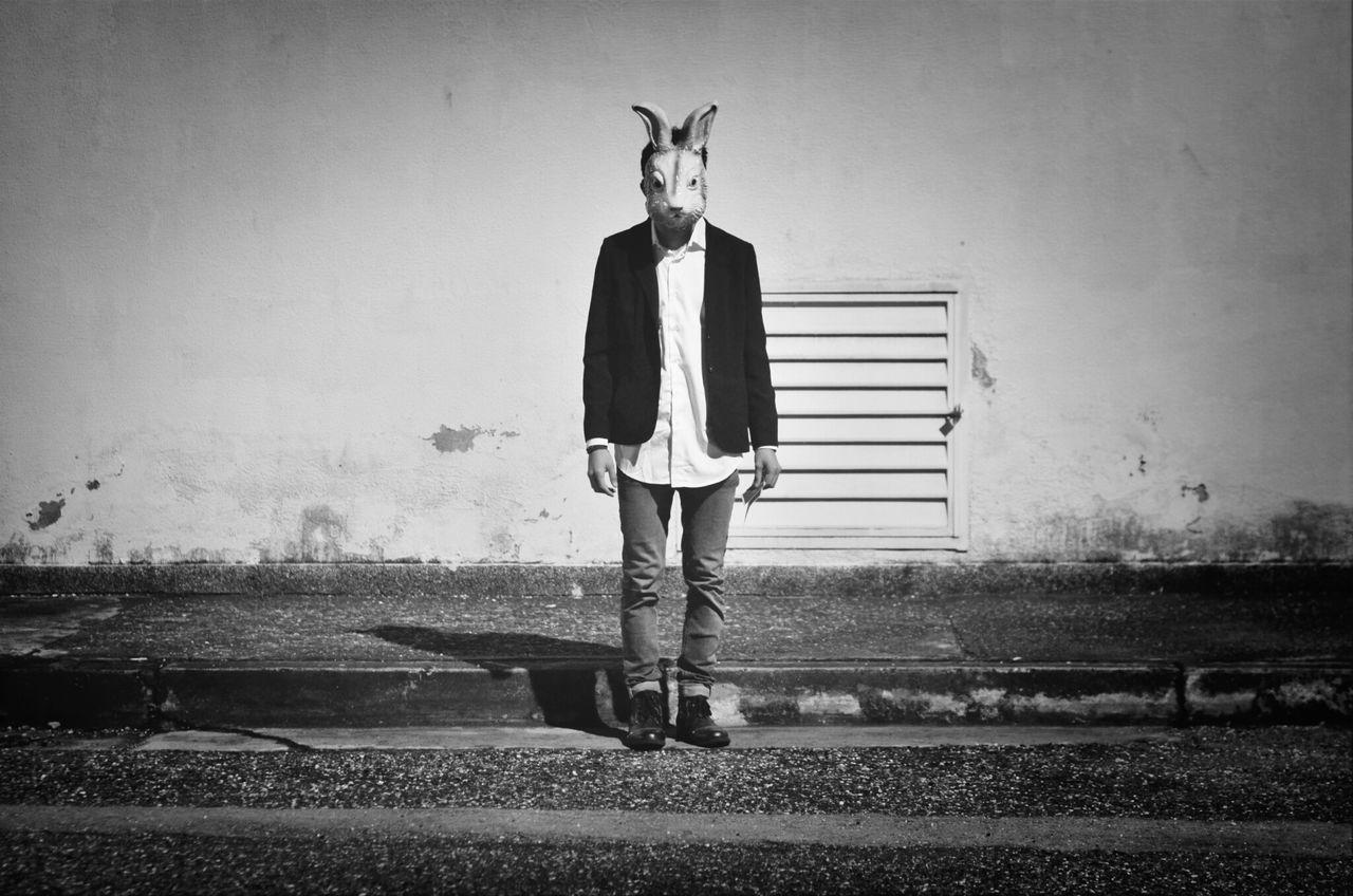 Portrait of man wearing rabbit mask