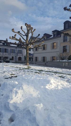 Carouge Suisse  Neige❄ Architecture