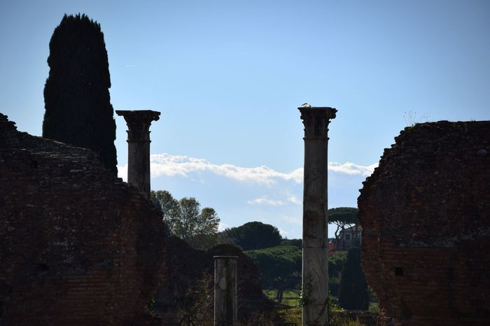 History Old Ruin Architecture Ancient Built Structure The Past Ancient Civilization Ruined Architectural Column Weathered Travel Destinations Sky Archaeology Monument Tourism Italy Hello World Travel Photography Popular Photos Eye4photography  Traveling Building Exterior Civilization Low Angle View Bad Condition