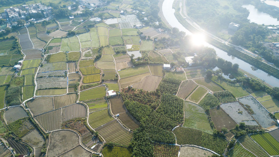 Landscape Environment Nature Day Aerial View Beauty In Nature Scenics - Nature Agriculture No People Sunlight High Angle View Field Land Architecture Tranquil Scene Outdoors Patchwork Landscape Rural Scene Built Structure Tree Lens Flare Plantation
