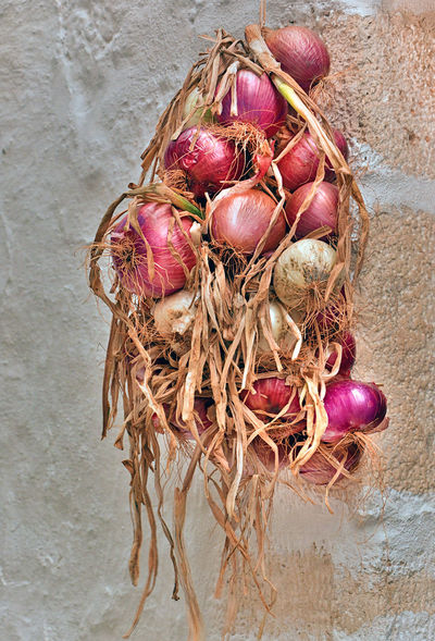 Animal Nest Basket Close-up Container Directly Above Dry Egg Food Food And Drink Freshness Healthy Eating High Angle View Indoors  No People Onion Plant Purple Still Life Vegetable Wellbeing Wicker