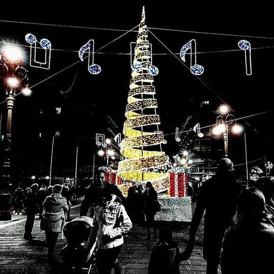Natale ad Avellino 😊 Christmas Tree Light Avellino Igers Igersitalia Ig_avellino Irpinia Paesaggiirpini Street Streetart Streetstyle Pic Picoftheday