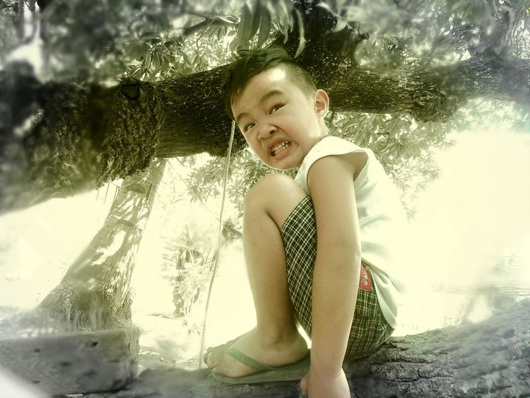 Picturing Individuality Buhawi Philippines Childhood Boy Cutekid Climbing Trees Naughtyboy Funnyface Samsungs4zoom Samsungphotography Mobilephotography Enjoying Life BatangPinoy Myson Nanayspride