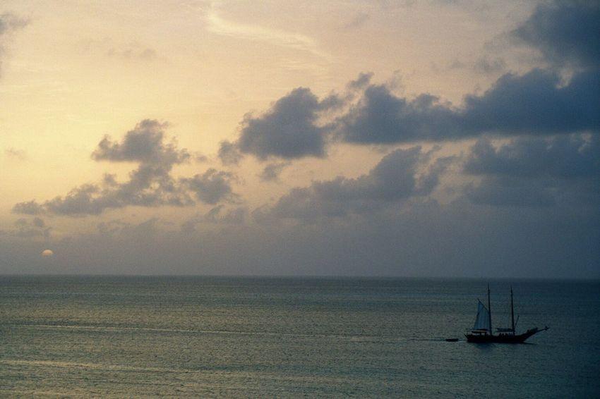 Aruba Sailboat In Sunset