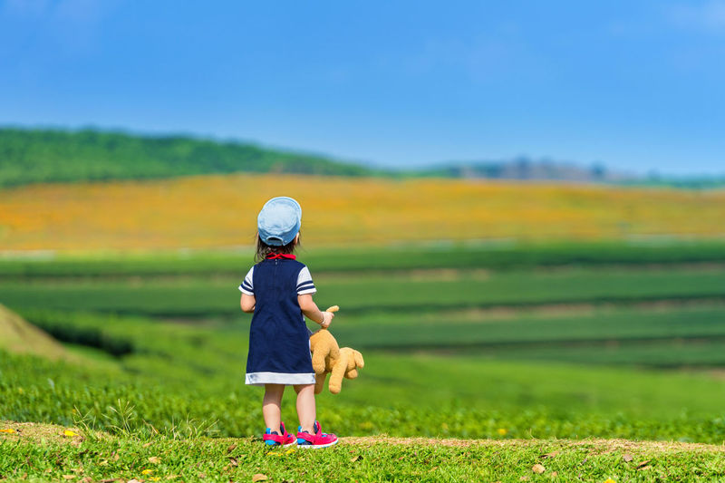 Rear View Of Girl With Toy Standing On Grassy Field