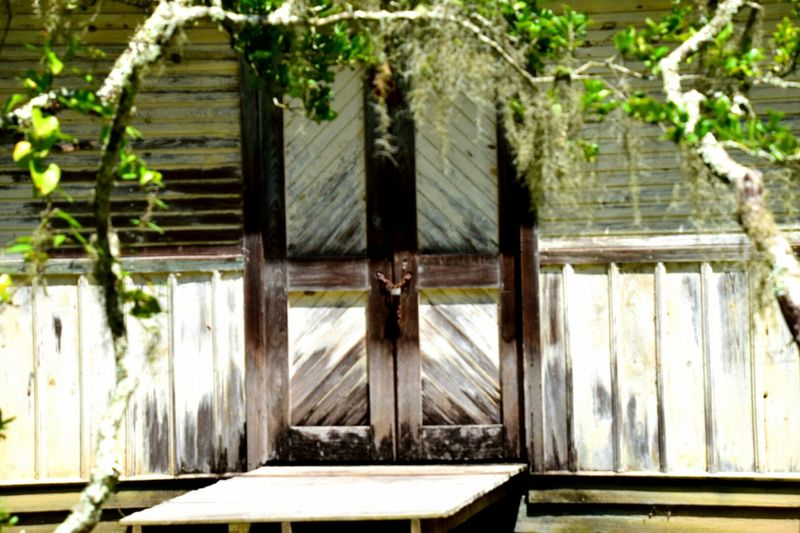 Taking Photos Day Tripping Daylight No People South Louisiana For The Love Of Photography Trees Wooden Texture Wooden Structure Greenery Limbs White Washed Building