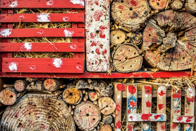 Large Group Of Objects Choice Wood - Material Variation No People Stack Abundance Multi Colored Indoors  Day Still Life Backgrounds Full Frame Directly Above Close-up Pattern Collection Container Celebration Floral Pattern Insects  Hotel Symetry Aestethic