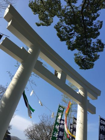 Tree Sky Clear Sky Low Angle View Built Structure Outdoors Day Architecture Building Exterior No People Kumamoto Castle Earthquake In Japan Kato Shrine Traveling Home For The Holidays Shrine Of Japan Nevergiveup Happy New Year 2017