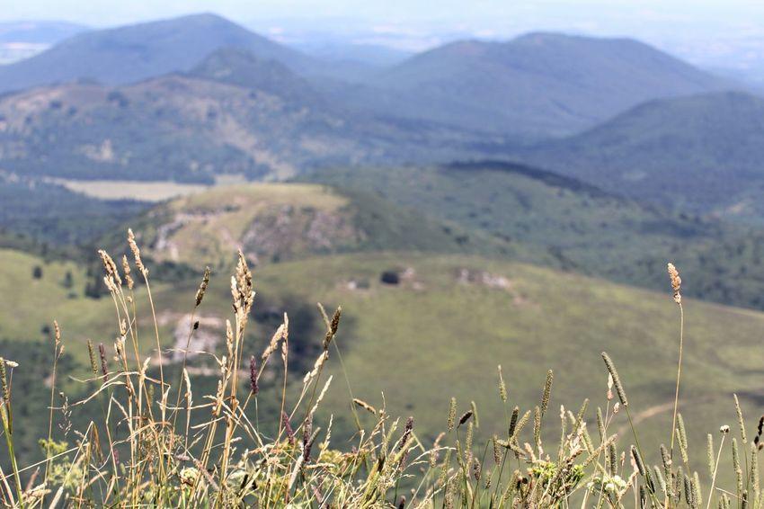 Auvergne Mountains Montagne Mountain Puy-de-Dome Landscape Chainedespuys Paysage D'Auvergne Landscapes EyeEm Best Shots - Landscape CestBeauLAuvergne Landscape_photography L'auvergne Puydedome Paysages Puy De Dôme