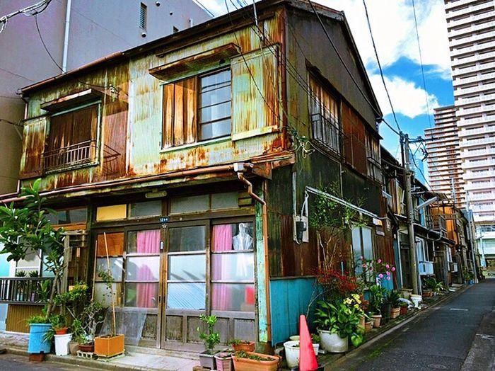 LUST Old House TSUKISHIMA Tsukishima Tokyo Tin Tinwall Rust Rusty Downtown Tokyo Street Photography Tokyo Tokyo,Japan