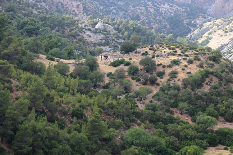Alfonso XIII Beauty In Nature Caminito Del Rey Idyllic Landscape Mountain Mountains Nature Photography Nature_collection Panoramic Photography Pantano Pasarelas Pasarelas Colgantes Scenics Tranquil Scene Tranquility Tree