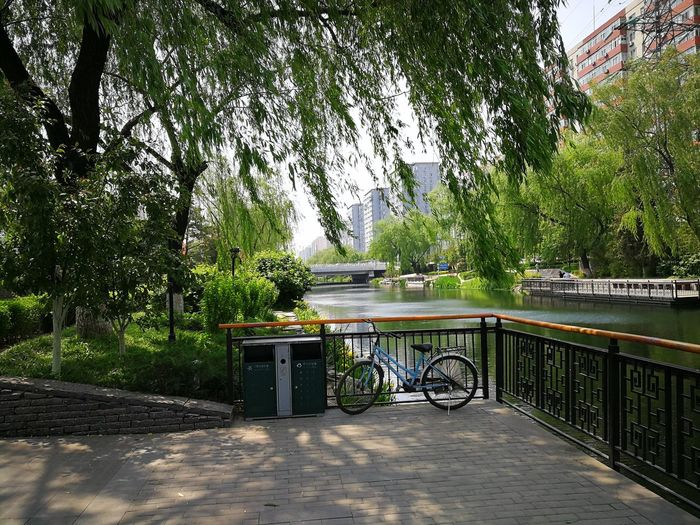 Despite the illusion that China is polluted, this photo shows the Beauty of Beijing with clear springtime weather and peaceful canal waters and trees with new bright green leaves Architecture BEIJING北京CHINA中国BEAUTY Bridge Can City Cityscape Day Daylight Nature No People No Pollution Outdoors Peaceful Spring Weather Tree