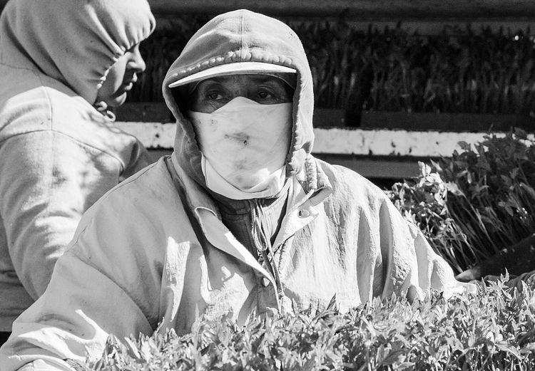 The Photojournalist - 2016 EyeEm Awards Migrants Monochrome Workers Black And White Documentary Photography Photojournalism Documentary Farm Workers Migrant Workers Portrait Planting Photography The Street Photographer - 2016 EyeEm Awards The Portraitist - 2016 EyeEm Awards