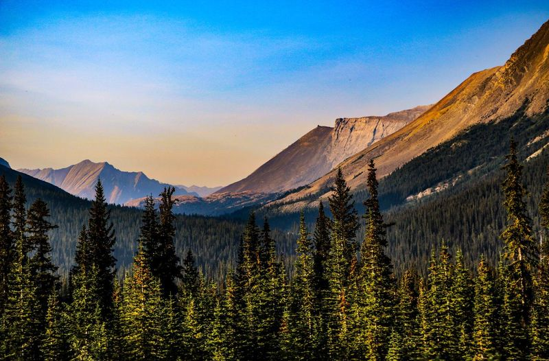 Canada Mountain Scenics - Nature Beauty In Nature Tranquil Scene Tranquility Nature Landscape Mountain Range No People Idyllic Forest Outdoors Land