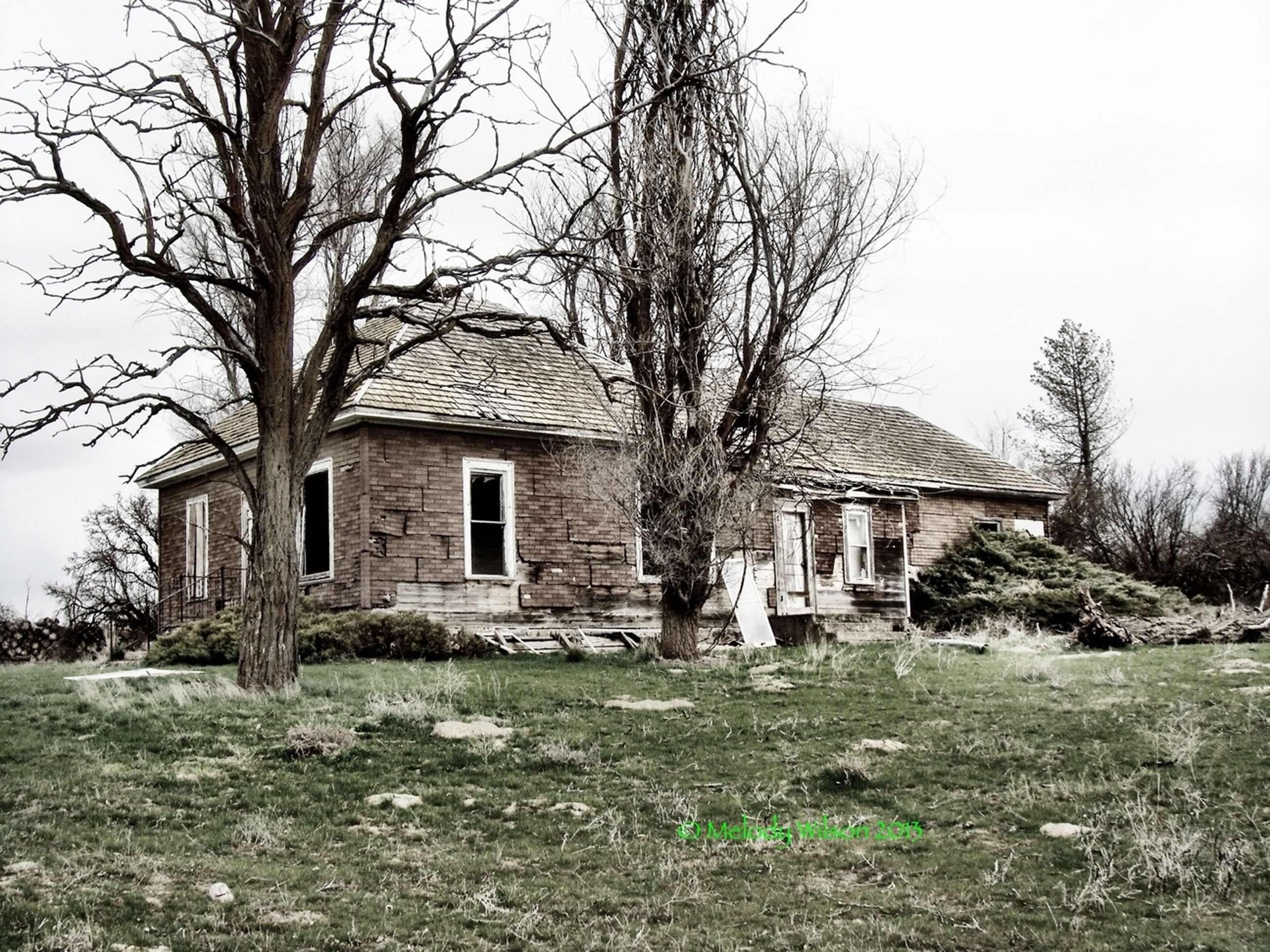 architecture, built structure, building exterior, abandoned, old, obsolete, damaged, run-down, house, tree, bare tree, deterioration, grass, clear sky, field, weathered, old ruin, bad condition, ruined, destruction