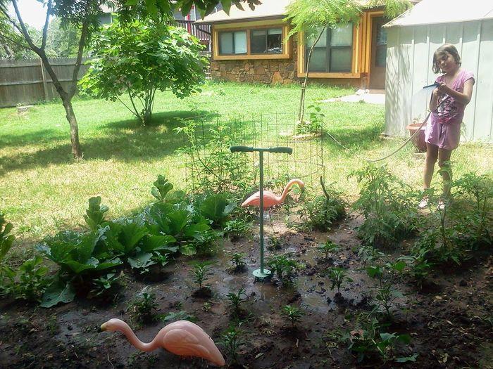 Photographic Memory Gardening With Kids