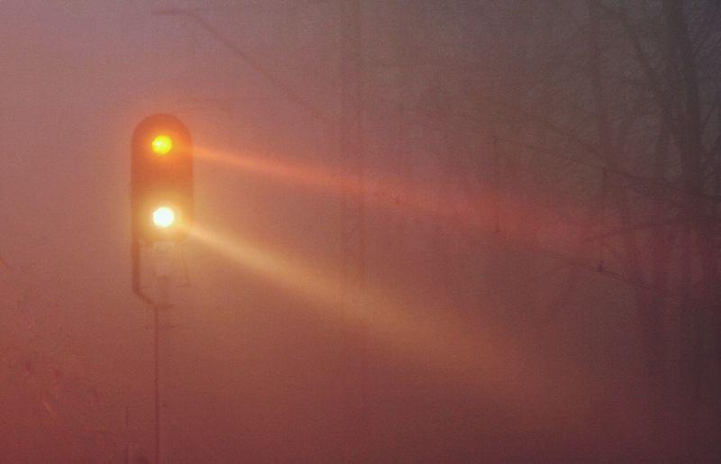 Fog and fog