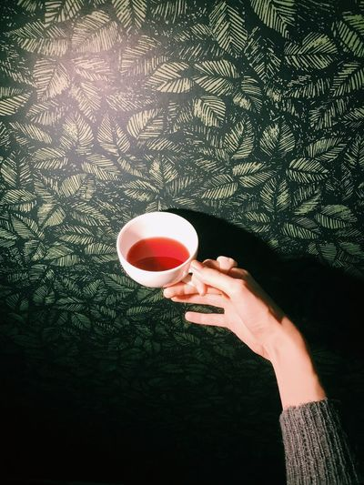 Holding Coffee Cup Coffee - Drink Drink One Person Food And Drink Human Hand Refreshment Human Body Part Real People Drinking High Angle View Tea - Hot Drink Lifestyles Women Day Indoors  Freshness Close-up Young Adult Cup Tea Drinks Minimalism Hand My Best Photo