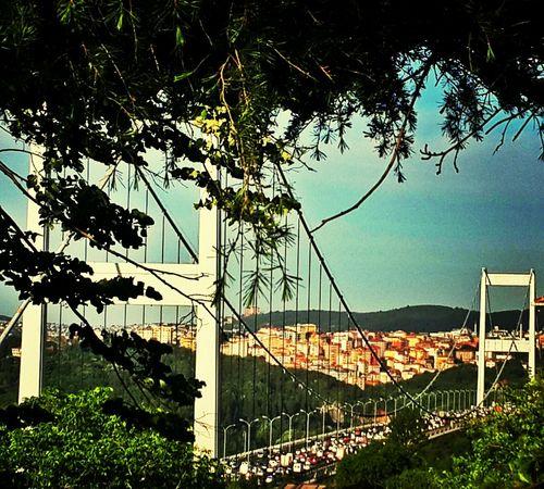 hep güzel hep özelsin istanbul Beautiful Nature EyeEm Nature Lover Istanbul - Bosphorus Istanbul Turkey
