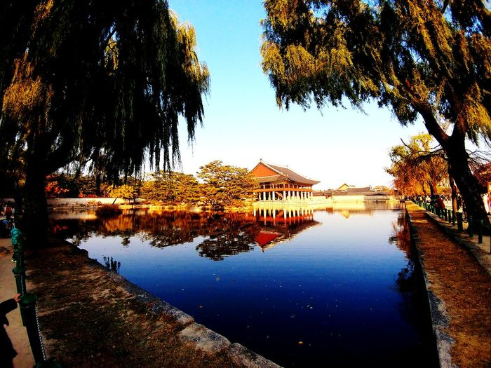 Palace Reflection Water Tree Sky Architecture Built Structure Lake Outdoors Day No People Nature Building Exterior