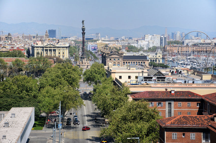 Columbus Monument must down. Barcelona's urban landscape at autumn season. Avenue Old Buildings Urban Landscape Trees Car Architecture Autumn Sunny Columbus Monument Barcelona Europe Day Sky Street Road Outdoors Cityscape Motor Vehicle Building Tree City Building Exterior High Angle View