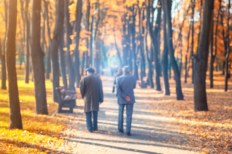 Rear view of men walking in forest during autumn