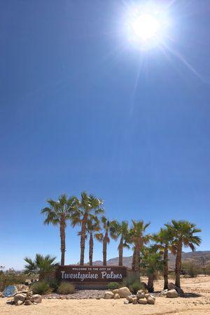 Passing through… #TwentyninePalms 🌴🌴🌴🌴🌴🌴🌴🌴🌴🌴🌴🌴🌴🌴 🌴🌴🌴🌴🌴🌴🌴🌴🌴🌴🌴🌴🌴🌴🌴 Palm Tree Palm Sky Tree Sunlight Plant Nature Blue Day