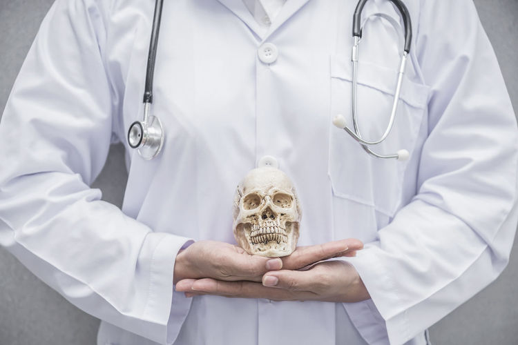 Healthcare Adult Care Clothing Concept Doctor  Expertise Front View Healthcare And Medicine Holding Hospital Indoors  Lab Coat Medical Equipment Medical Instrument Medical Supplies Midsection Occupation People Professional Occupation Responsibility Skill  Skull Standing Stethoscope