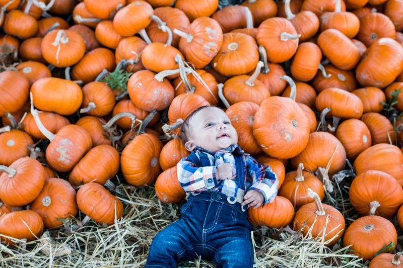 High angle view of baby boy lying by pumpkins