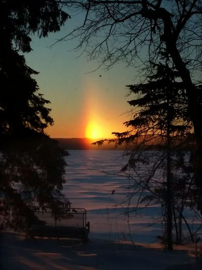 SunDogs over Roy Lake Mn this morning..32 below air temperature 🌞 Sundogs Tree Water Silhouette Sea Sun No People