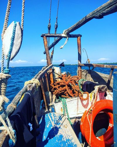 The Great Outdoors - 2016 EyeEm Awards Sea Dhow Boat Work Dolphins Feel The Journey