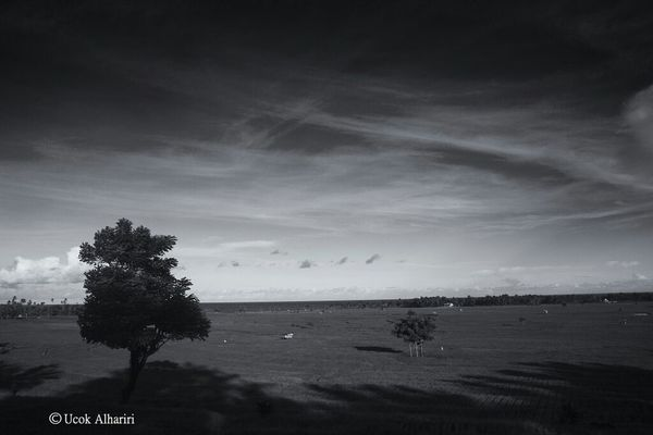 Blackandwhite Landscape INDONESIA Lovecelebes
