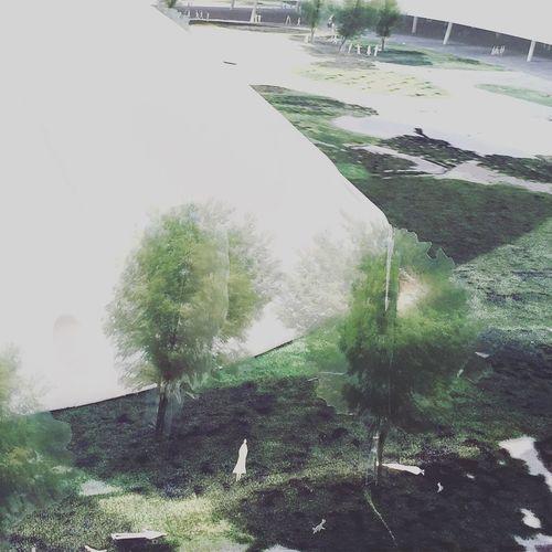 *2015/10/04* OSCAR MIEMEYER展 @東京都現代美術館