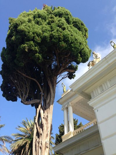 Corfu Sissi's Castle Summer