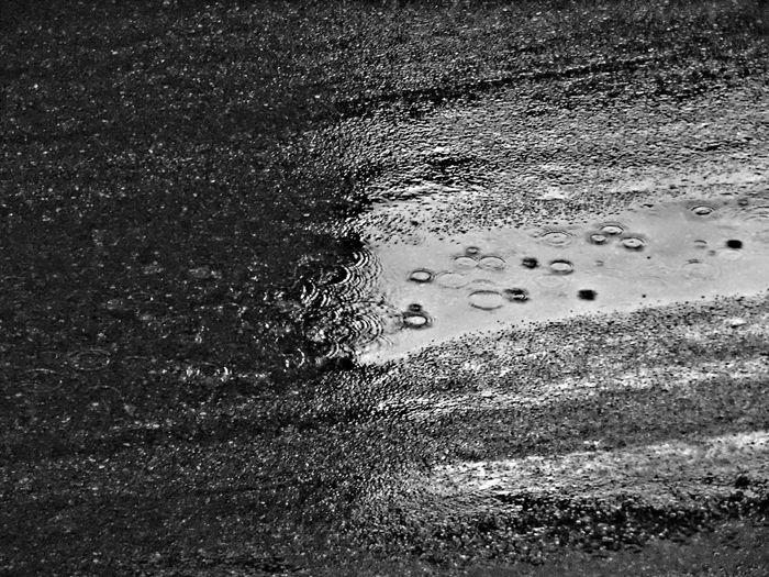 Rain Drops Rain