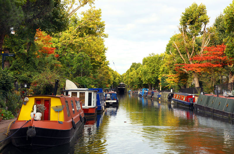 Boats moored on river by trees against sky