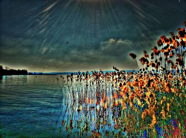 Water_collection Hdr_Collection Lake View