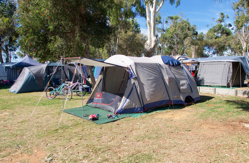 Camping tents and bicycles on outdoor campground in Kalbarri, Western Australia. Accomodation Australia Bicycles Bikes Campground Camping Camping Out Caravan Park Day Dome Ground Kalbarri Lifestyle Nature No People Outdoors Park Pop-up Sleeping Sunlight Tent Traveling Trees Western Australia Camp