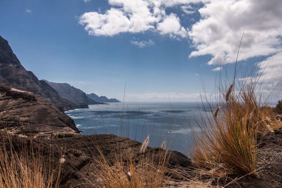 Fuerteventura Beauty In Nature Day Grass Kanarische Inseln Landscape Nature No People Outdoors Sea Sky Water