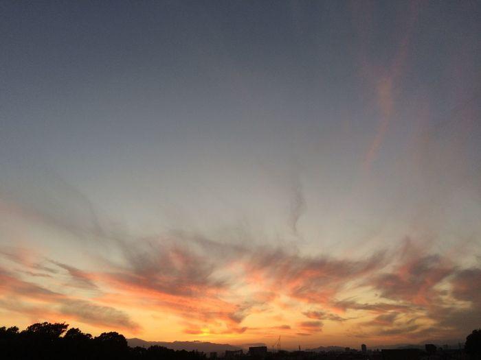 Sunset Autumn 空 Sky 雲 Clouds Nature 自然 夕焼け