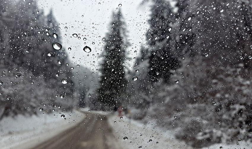 Rain drops on road