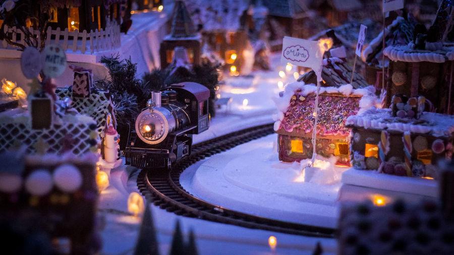 the train in