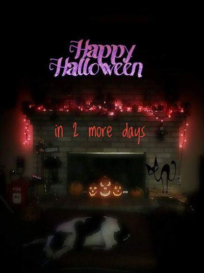 Text Neon Illuminated Ilovehalloween Halloween Las Vegas, Nv Snapseed Spooky Pumpkinhead Creativity Fantasy Silhouette Black Cat Animal
