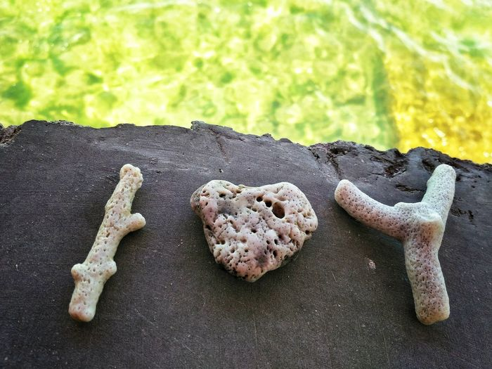 I heart you, at the Beach . No People Day Nature Outdoors Close-up Heart I Love You Art Coral Affection Live For The Story
