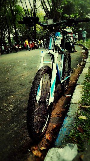Cycle..
