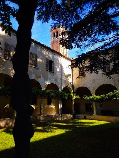 Shadow Architecture Built Structure Building Exterior Tree Outdoors Sky Cloisters  Towers