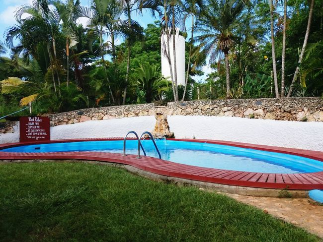 Utila, Islas De La Bahia, Hn Nature 504H Palmeras Al Atardecer Arts