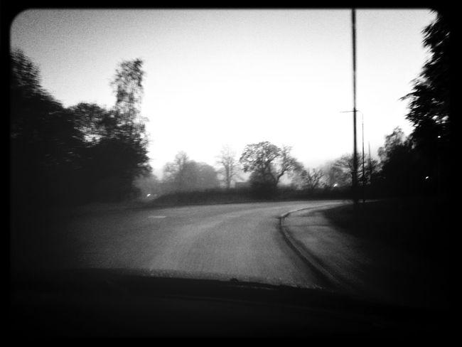 Fog Dusk Mystery