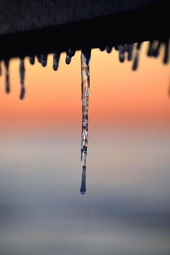 Close-up of icicles against sky during sunset